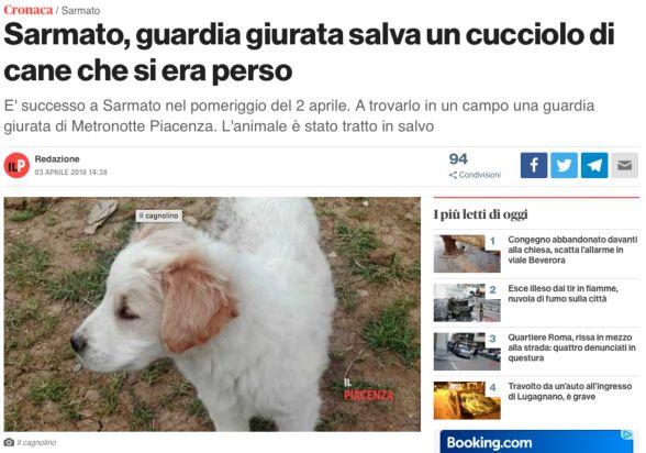 Cucciolo Salvato Da Guardia Di Metronotte Piacenza Rassegna Stampa